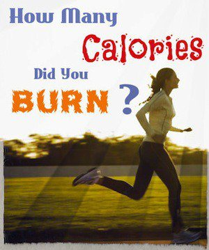 calories burned exercise calculator. Black Bedroom Furniture Sets. Home Design Ideas