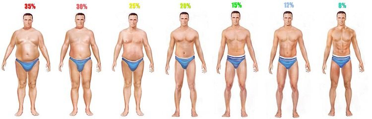 Men's Body Fat Percentages