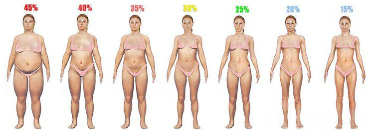 Body fat index for women time