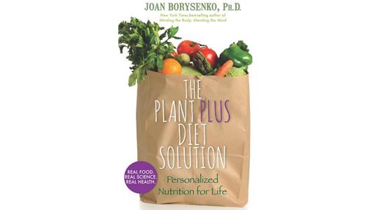 joan borysenko diet plan